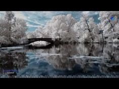 GIOVANNI MARRADI - Snowfall - YouTube