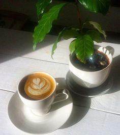 До лета осталось всего десять дней. Пьём #капучино в #citycoffeespb и ждём июнь!  #citycoffee #cappuccino #latteart #coffeeart #coffeetree #summercoffee #coffeelook #coffeelove #coffeetime #coffeespb #coffee #ситикофеспб #ситикофе #кофе #капучино #латтеарт #кофекофе #кофевпитере #кофеспб by citycoffeespb