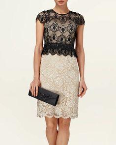 Phase Eight | Women's Dresses | Annalina Lace Beaded Dress