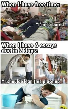 Funny pictures about student essays Funny Student Essays, Test Answers and Drawings. Find this Pin and more on Funny Student Essays, Test Answers and Drawings by. Really Funny Memes, Stupid Funny Memes, Funny Relatable Memes, Hilarious, Funny Stuff, 9gag Funny, Student Memes, School Memes, Funny School
