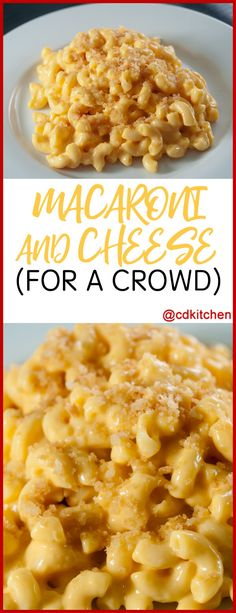Macaroni and Cheese for a Crowd - If you need to serve a big group this recipe is ideal! This is an easy and basic mac and cheese recipe that is sure to please everyone. It isn't overly cheesy and has a crunchy topping. Need to serve more than 50 people? No problem, just change the serving size using our handy tool. A standard catering-sized pan (20x12x4) should work for 50 half-cup servings. Made | CDKitchen.com
