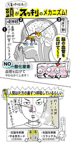 """With """"one nose breathing method"""", you can refresh your head and sleep well! Fitness Diet, Yoga Fitness, Health Fitness, Home Health, Health Care, Mental Health, Body Action, For Your Health, Manga"""