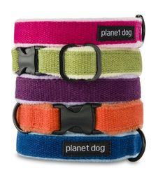 Planet Dog Cozy Hemp Adjustable Collar, Apple Green, Medium - http://www.thepuppy.org/planet-dog-cozy-hemp-adjustable-collar-apple-green-medium/
