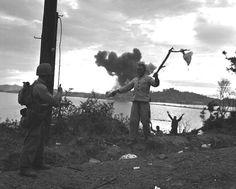 North Korean troops surrendering on Wolmi-do Korean People, Ww2 Tanks, Prisoners Of War, Korean War, American Soldiers, North Korea, Military History, Armed Forces, Troops