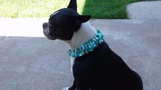 Buster Brown Dog Collar Cover Scrunchie Small #Handmade