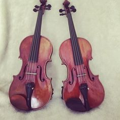 Two violins is all you need @thomann.music  . . . #violin #violine #geige #schleskeviolins #violinist #violino #violinista #violins #violinduo #violinists #violin  #violinplayer #violinplayer #classicalbuzz #thomann #musiciansofinstagram #instagramjokes