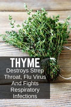 Thyme Destroys Strep Throat, Flu Virus And Fights Respiratory Infections - Thyme is an amazing herb that helps with many health issues, learn the benefits here. Health And Nutrition, Health Tips, Health And Wellness, Health Fitness, Health Facts, Nutrition Tips, Thyme Herb, Strep Throat, Health Trends