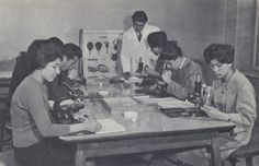 """Urban Afganistan of the 1950's and 1960's when women still had basic human rights. """"Biology class, Kabul University."""""""