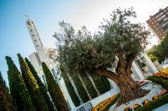 #Mormon #Temple in #Madrid #rogersinspain carissa rogers goodncrazy