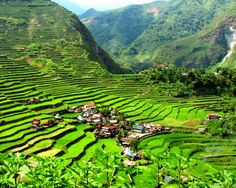 Banaue Rice Terraces, Philippines.  I still dream on visiting this someday - my parents didn't take me when they went because I was sick :-(