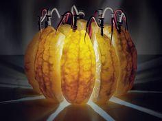 Дольки апельсина вырабатывают электроэнергию