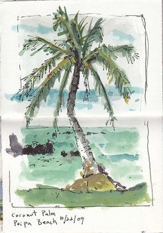 bill sharp's fun ink and water color style from his Kauai visual journal trip