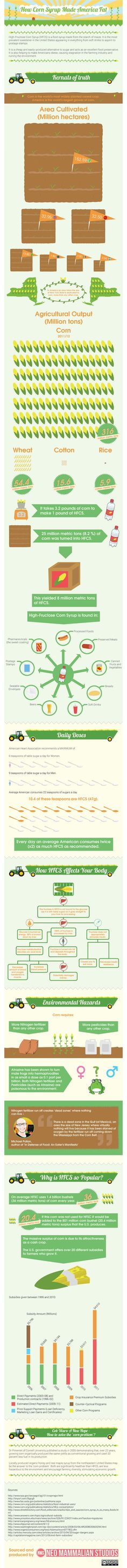 How High-Fructose Corn Syrup Is Making America Fat (Infographic)