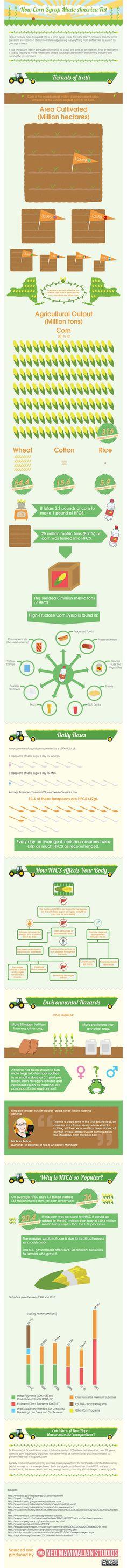 fit, corn syrup, fat infograph, healthi eat, food, highfructos corn, cornsyrup, america fat, healthi nutrit