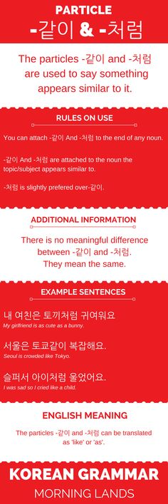 -같이 And -처럼 are two particles for the same thing. You use them to express something has similar qualities or appears like it. They are fun and easy to use. #LearnKorean #Korean #한국어