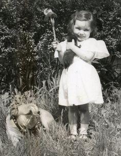 Vintage 1930 s Photograph / Snapshot - Little Girl W/ Kitten - Bull Dog  - Cute