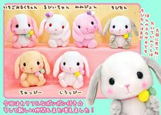 Kawaii Bunny Rabbits