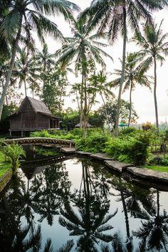 Natural Pool -- bambu indah, bali.  eco-luxury boutique resort.