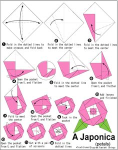 Money origami instructions for beginners papiroflexia advanced origami camellia japonica petals mightylinksfo