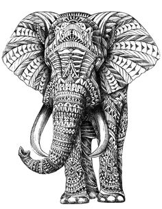 Zentangle pattern elephant