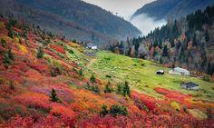 Sis Dağı / Şalpazarı - Trabzon