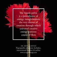 The female pelvis Massage Therapy, Healer, Fertility, Self, Author, Gratitude, Detox, Wellness, Portland Oregon