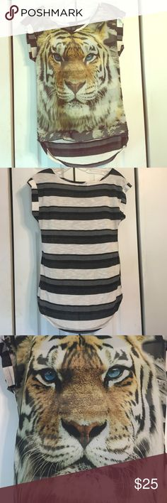 Sheer Tiger Face Tee This top is fierce! The front is sheer with a tiger face print with bright blue eyes. The back is a knitted black, gray, and white stripe. The back is longer than the front. Rue 21 Tops Tunics