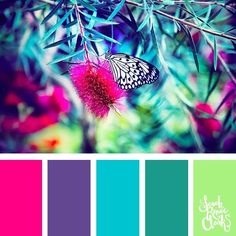 Spring color ideas 25 color palettes inspired by the PANTONE color trend predictions for Spring 2018 Use these color schemes as inspiration for your next colorful project Check out more color schemes at www sarahrenaecla color colorpalette - Color Schemes Colour Palettes, Spring Color Palette, Bedroom Color Schemes, Spring Colors, Color Combos, Bright Colour Palette, Bedroom Colors, Bright Color Schemes, Bedroom Ideas