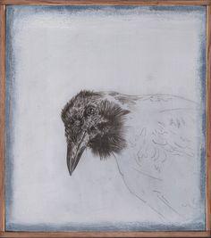 Crow - Francesco Amatori Silverpoint Drawing
