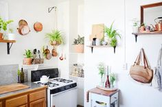 House Tour: Small San Francisco Home Filled With Plants | Apartment Therapy