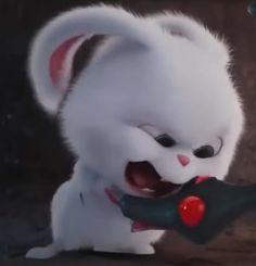 """""""I am your leader! Cute Cartoon Characters, Cartoon Pics, Snowball Rabbit, Cute Images For Dp, Hd Cute Wallpapers, Cute Bunny Cartoon, Rabbit Wallpaper, Secret Life Of Pets, Cute Disney Wallpaper"""