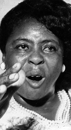 Fannie Lou Hamer (1917-1977) Hamer was a civil rights activist and organizer of the Student Nonviolent Coordinating Committee Fannie Lou Hamer. She helped blacks register to vote and co-founded the Mississippi Freedom Democratic Party.