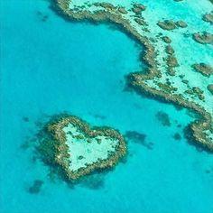 regram @destinosesonhos  . Heart Reef Great Barrier Reef Austrália . @ylkaliberato #greatbarrierreef #HeartReef . . Marque alguém que você gosta  by josysilvasa http://ift.tt/1UokkV2