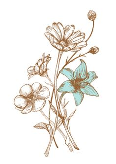 Wild Flowers by JUNG SOO CHAE, via Behance