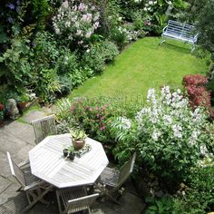 Pamela Johnson's London garden