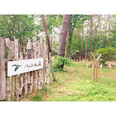 【_naaaaaami】さんのInstagramをピンしています。 《. . ペンションを借りた🏡 . #japan #nagano #karuizawa #cottage #penshon #green #kitakaruizawa #belair #woods #belairwoods #tree #nature #travel #trip #travelgram #tripgram #holiday #drive #日本 #長野 #軽井沢 #北軽井沢 #ベルエールの森 #コテージ #ペンション #森 #自然 #旅行 #休日 #ドライブ》
