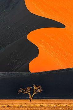 """""""Desert Solitaire"""" namib desert"""