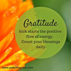 Gratitude kick starts the positive flow of energy.  Count your blessings daily.