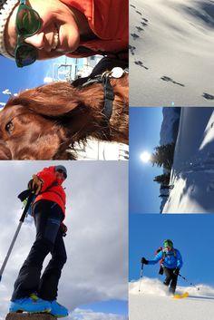 😄 Unsere Skitour durch dir prachtvolle Winterkulisse 🗻 im benachbarten Paznauntal war ein unvergessliches Erlebnis, nicht weit von St. Anton am Arlberg.❄️ Jetzt traumhaften Winterurlaub buchen! 🎿🏂⛷ #berge #alpen #Stanton #bergwanderungen #bergsteigen #skigebiet #skifahren St Anton, Ski Trips, Winter Vacations, Mountaineering, Ski, Alps, Mountains