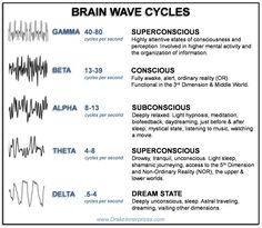 Levels of Consciousness in the 3rd Dimension & the Brain Wave States | Bear With Me