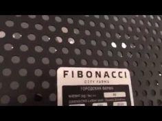 Шоурум лофт FIBONACCI