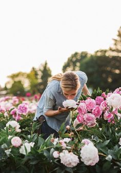The owner of the family-run Floret Flower Farm shares her tips to making peonies last longer in a vase. Plus, how to grow them yourself. Cut Flower Garden, Flower Farm, Flower Beds, Flower Gardening, Cactus Flower, Love Flowers, Beautiful Flowers, Exotic Flowers, Purple Flowers