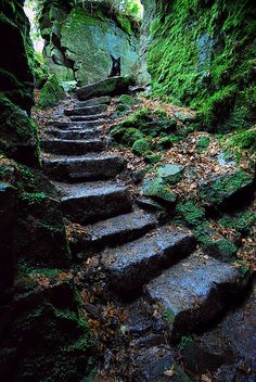 ~Ancient Luds Church, Staffordshire, England photo by andrew~ Foto Nature, Stairway To Heaven, Abandoned Places, Pathways, Stairways, Beautiful Places, Scenery, Places To Visit, Around The Worlds