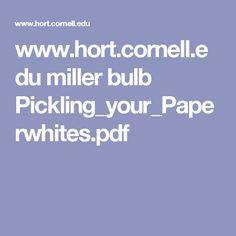 www.hort.cornell.edu miller bulb Pickling_your_Paperwhites.pdf
