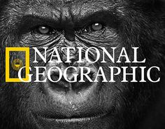 "Check out my @Behance project: ""National Geographic Newspaper/CI School project."" https://www.behance.net/gallery/24849075/National-Geographic-NewspaperCI-School-project"