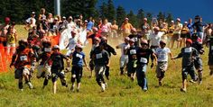canadian cheese rolling -