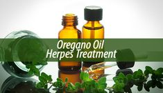 Oregano oil is one of the most beneficial herbal oils out there. This is why today we will see the effects of the oregano oil herpes treatment.