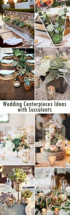 Succulents are the perfect addition to a wedding and can serve as a centerpiece!
