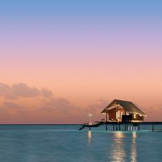 Fancy.com    Maledives