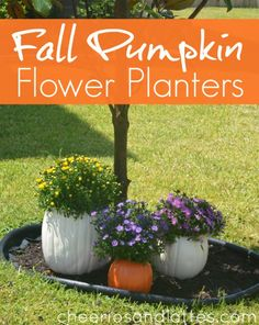 Fall Pumpkin Flower Planters by @MacKenzie {Cheerios and Lattes} #MPumpkins
